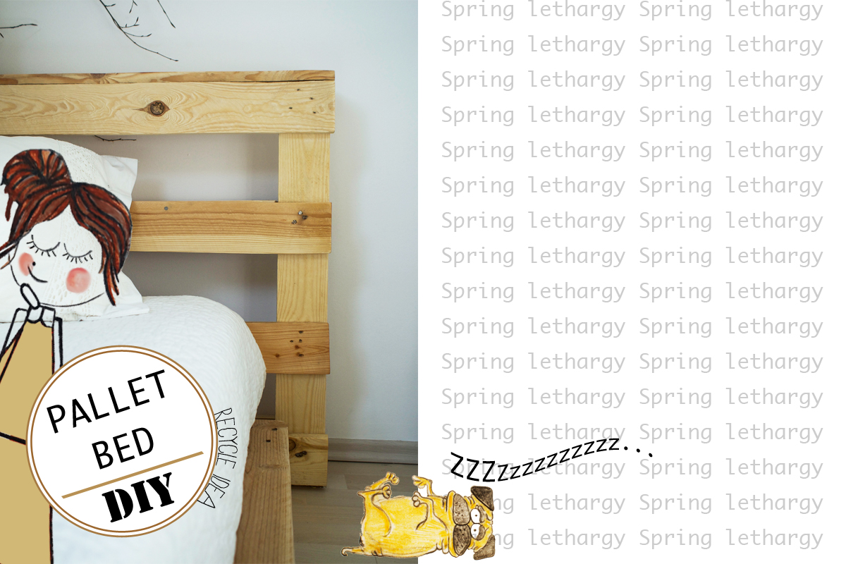 Spring Lethargy | Pallet Bed