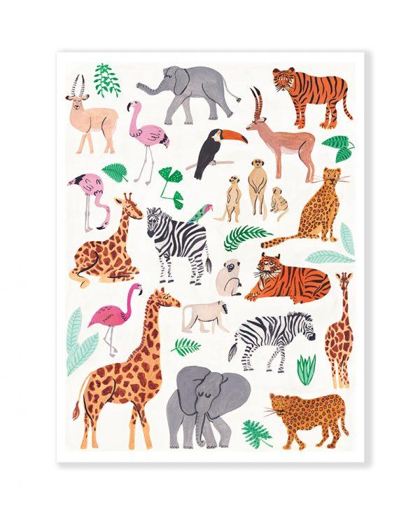 Animals & co